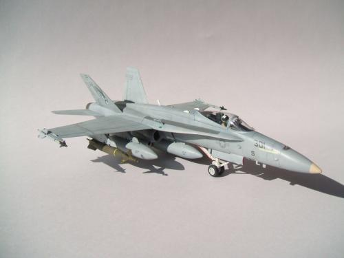 F/A-18C VFA-192