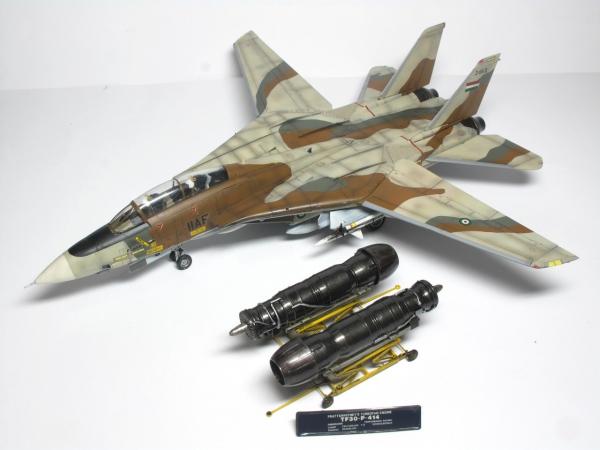 F-14A イラン革命空軍