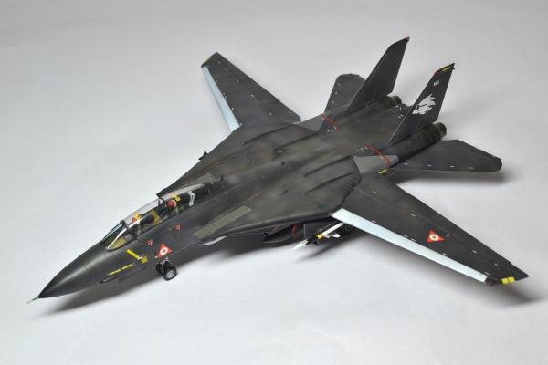 F-14A TOMCAT 自由エルジア空軍 LEVY