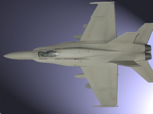 F18 FORNET 1/48