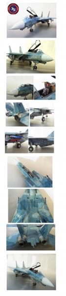 トップガン仕様F14A ( NASWC)1/32タミヤ改