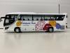 中九州観光バス フジミ観光バス改造です画像3