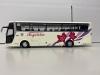 豊鉄観光 貸切バス フジミ1/32観光バス改造画像3