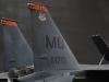 1/32 F15E ストライクイーグル ボールドタイガース画像2