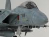 1/32 航空自衛隊F15Jイーグル 小松基地306SQ画像5