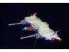 コアブースター 高機動タイプ画像4